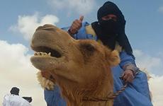 camel-trek-berber